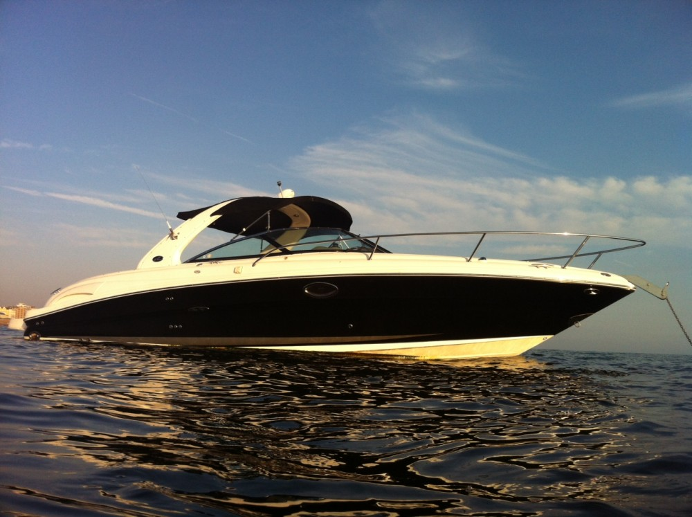 Sea Ray 290 Sun Sport Brighton Boat Sales