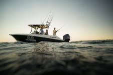 Wellcraft 262 Fisherman SCARAB