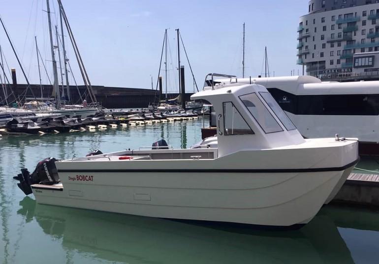 Dingle Bobcat Catamaran