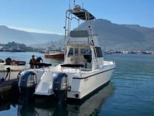 Magnum 32 Catamaran